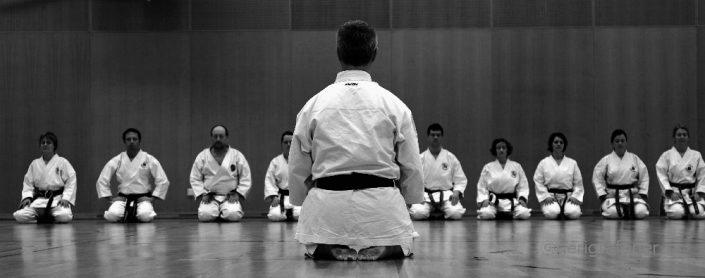Ikikata Modul Karate Vorarlberg (c) Gerhard Grafoner