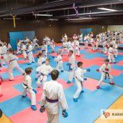 ÖKB NWLG Salzburg 1 (c) Geri Grafoner - Karate Vorarlberg