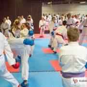 ÖKB NWLG Salzburg 4 (c) Geri Grafoner - Karate Vorarlberg