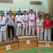 Österreichische Meisterschaft Karate Vorarlberg 2017 Spitzensport Karate Austria Matthias Wechner Demirel Mujagic Mihael Dujic