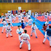 WILA 2018 Olympiazentrum Vorarlberg KARATE VORARLBERG KARATE AUSTRIA Kumite Spitzensport Gerhard Grafoner