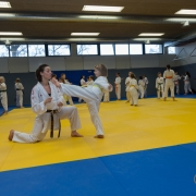 INNOVATION DAYS 2019 KARATE VORARLBERG KARATE HOFSTEIG Kumite Bettina Plank