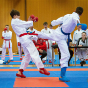 Karate Austria Nationalteam Trainings OZ Vorarlberg KARATE VORARLBERG Andreas Nitz
